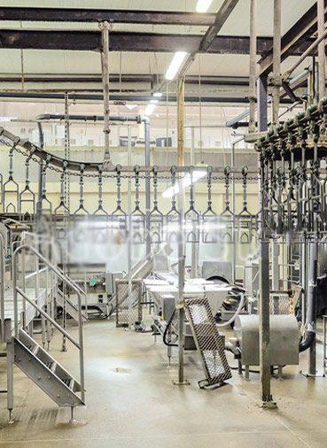 Abbatoir Industry
